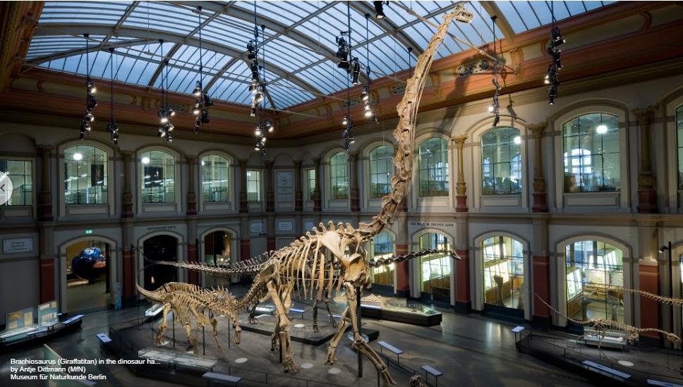 Sprehodite se z nami po svetovno znanih muzejih
