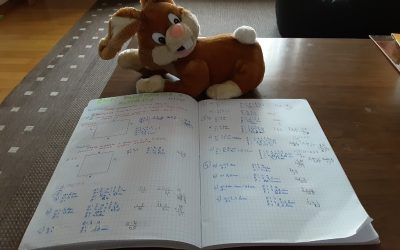 Matematika na daljavo